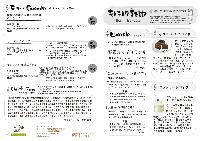 キトテノワ新聞 No.11